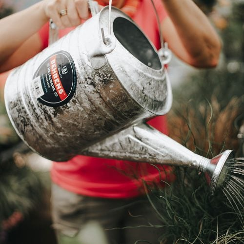 Hot Dipped Galvanized Steel Watering Can