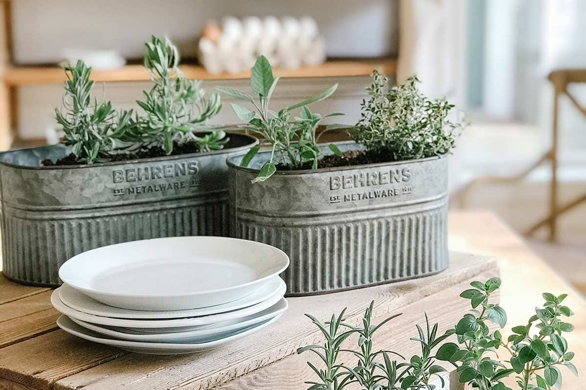 Galvanized planters with herbs on a kitchen table