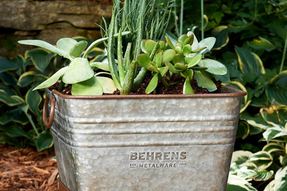 Multi use tubs for planting